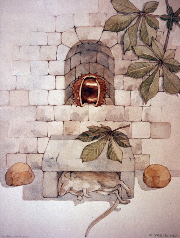 Alcove-Mouse